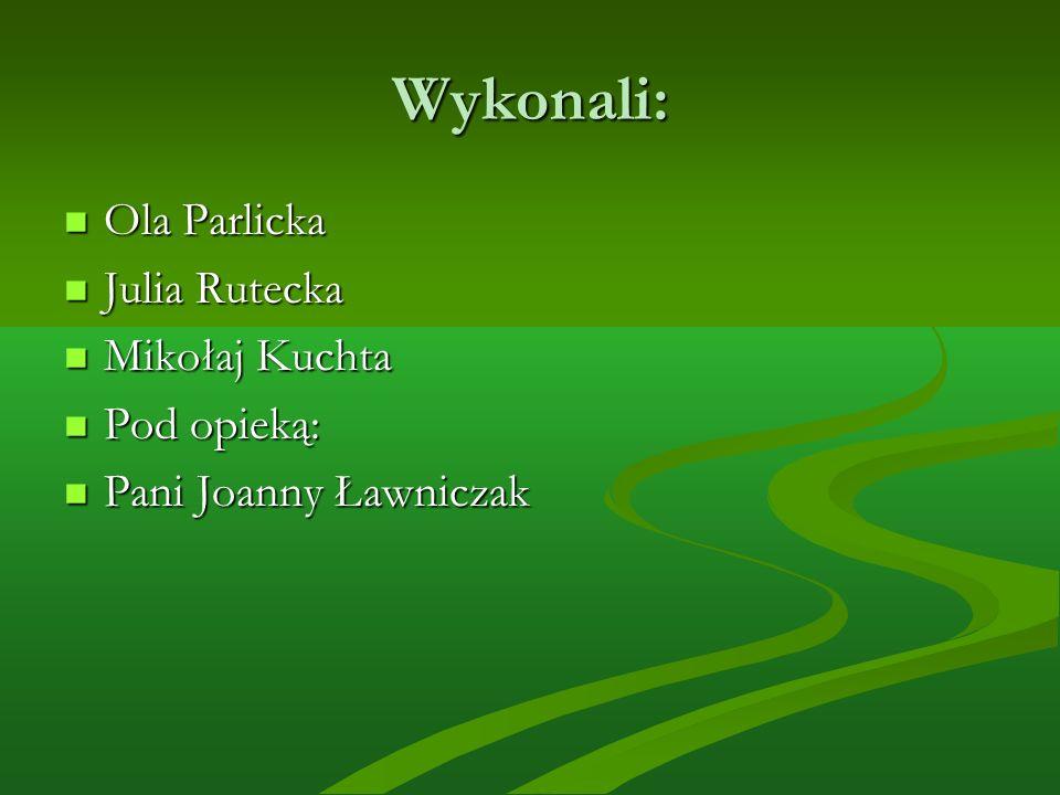 Wykonali: Ola Parlicka Ola Parlicka Julia Rutecka Julia Rutecka Mikołaj Kuchta Mikołaj Kuchta Pod opieką: Pod opieką: Pani Joanny Ławniczak Pani Joanny Ławniczak