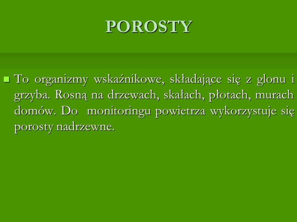 POROSTY To organizmy wskaźnikowe, składające się z glonu i grzyba.