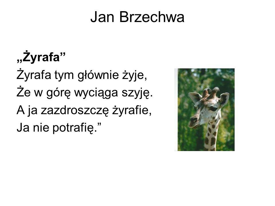Jan Brzechwa Żyrafa Żyrafa tym głównie żyje, Że w górę wyciąga szyję. A ja zazdroszczę żyrafie, Ja nie potrafię.