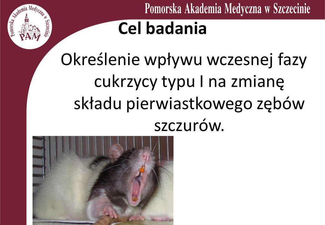 Cel badania Określenie wpływu wczesnej fazy cukrzycy typu I na zmianę składu pierwiastkowego zębów szczurów.
