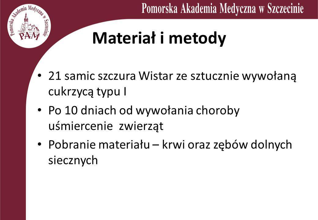Materiał i metody 21 samic szczura Wistar ze sztucznie wywołaną cukrzycą typu I Po 10 dniach od wywołania choroby uśmiercenie zwierząt Pobranie materi