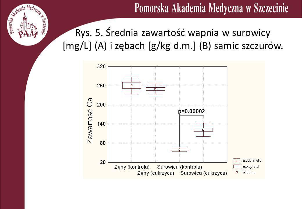 Rys. 5. Średnia zawartość wapnia w surowicy [mg/L] (A) i zębach [g/kg d.m.] (B) samic szczurów. p=0.00002