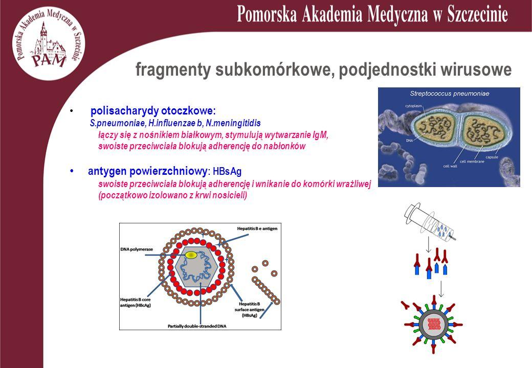 fragmenty subkomórkowe, podjednostki wirusowe polisacharydy otoczkowe: S.pneumoniae, H.influenzae b, N.meningitidis łączy się z nośnikiem białkowym, stymulują wytwarzanie IgM, swoiste przeciwciała blokują adherencję do nabłonków antygen powierzchniowy : HBsAg swoiste przeciwciała blokują adherencję i wnikanie do komórki wrażliwej (początkowo izolowano z krwi nosicieli)