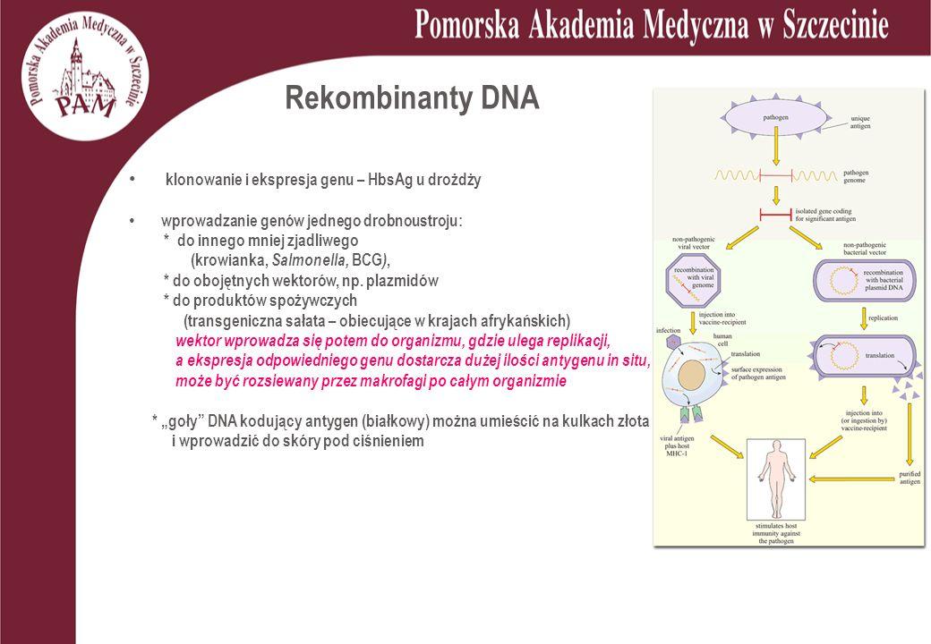 Rekombinanty DNA klonowanie i ekspresja genu – HbsAg u drożdży wprowadzanie genów jednego drobnoustroju: * do innego mniej zjadliwego (krowianka, Salmonella, BCG ), * do obojętnych wektorów, np.