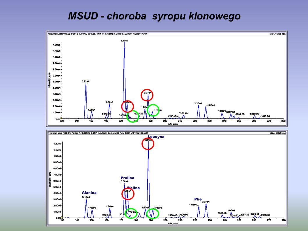 MSUD - choroba syropu klonowego