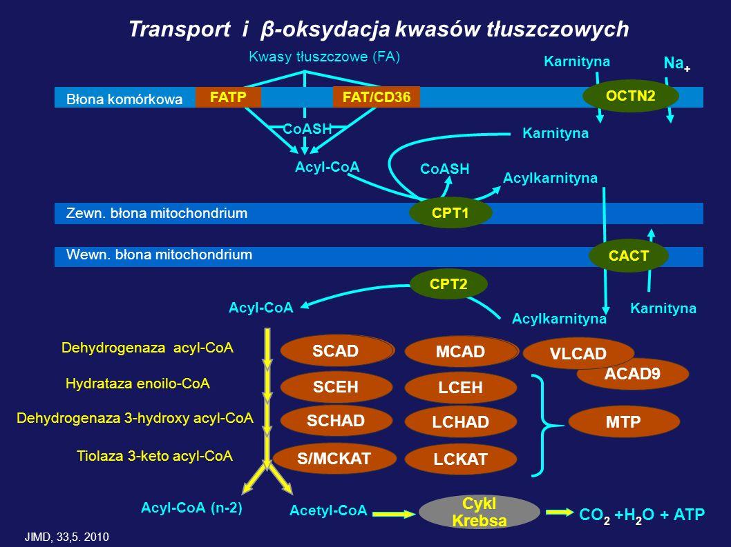 ACAD9 Błona komórkowa FATP FAT/CD36 OCTN2 Acyl-CoA CoASH Karnityna Zewn. błona mitochondrium CPT1 Wewn. błona mitochondrium CPT2 Acylkarnityna CoASH C