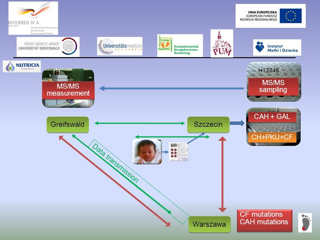 Greifswald Szczecin Warszawa CH+PKU+CF CAH + GAL MS/MS sampling MS/MS measurement Data transmission CF mutations CAH mutations H12345