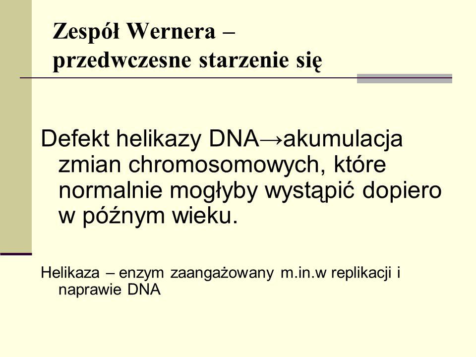 Zespół Wernera – przedwczesne starzenie się Defekt helikazy DNA akumulacja zmian chromosomowych, które normalnie mogłyby wystąpić dopiero w późnym wie