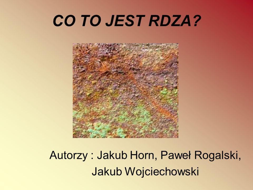CO TO JEST RDZA? Autorzy : Jakub Horn, Paweł Rogalski, Jakub Wojciechowski