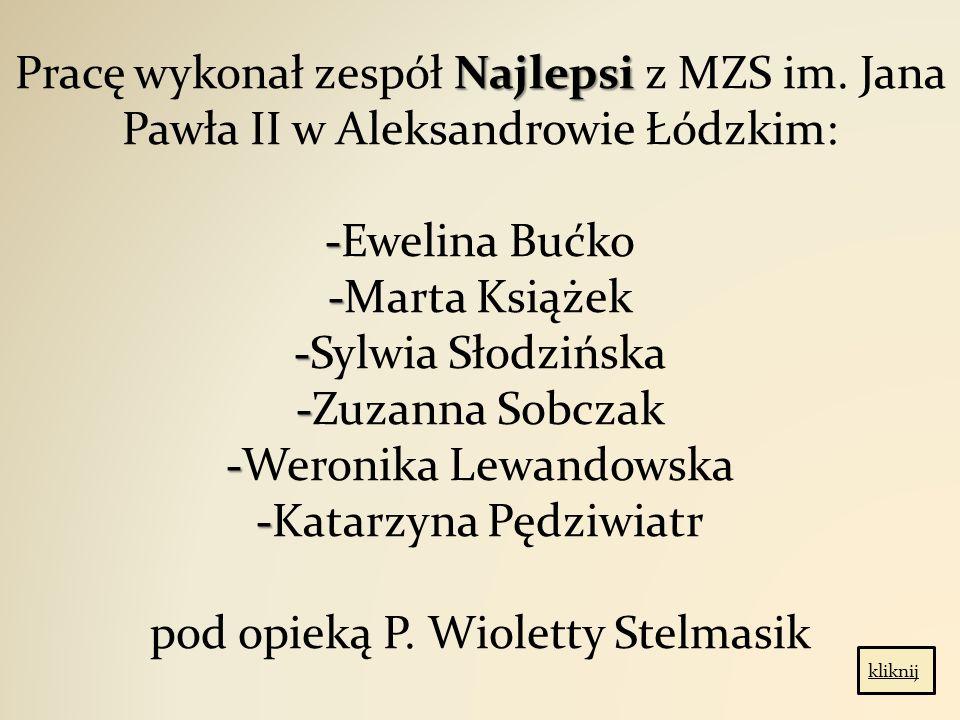 Najlepsi - - - - - - Pracę wykonał zespół Najlepsi z MZS im.