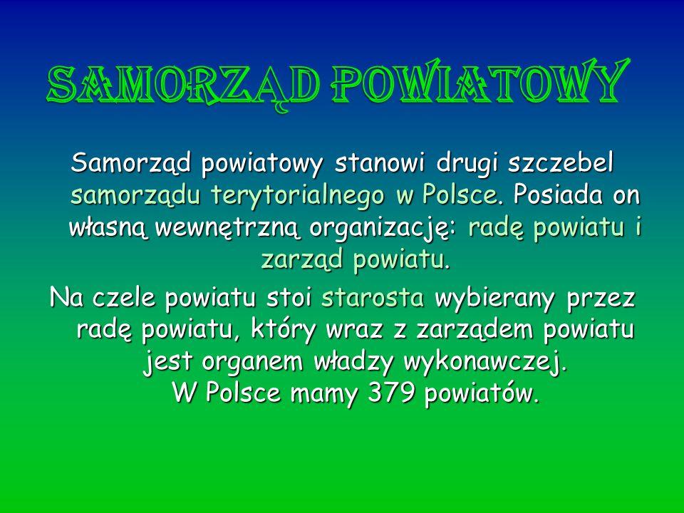 Samorząd powiatowy stanowi drugi szczebel samorządu terytorialnego w Polsce. Posiada on własną wewnętrzną organizację: radę powiatu i zarząd powiatu.
