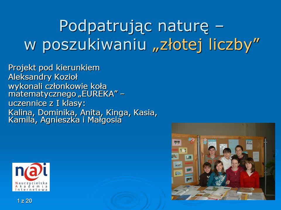 1 z 20 Podpatrując naturę – w poszukiwaniu złotej liczby Projekt pod kierunkiem Aleksandry Kozioł wykonali członkowie koła matematycznego EUREKA – ucz