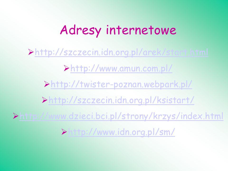 Adresy internetowe http://szczecin.idn.org.pl/arek/start.html http://www.amun.com.pl/ http://twister-poznan.webpark.pl/ http://szczecin.idn.org.pl/ksi