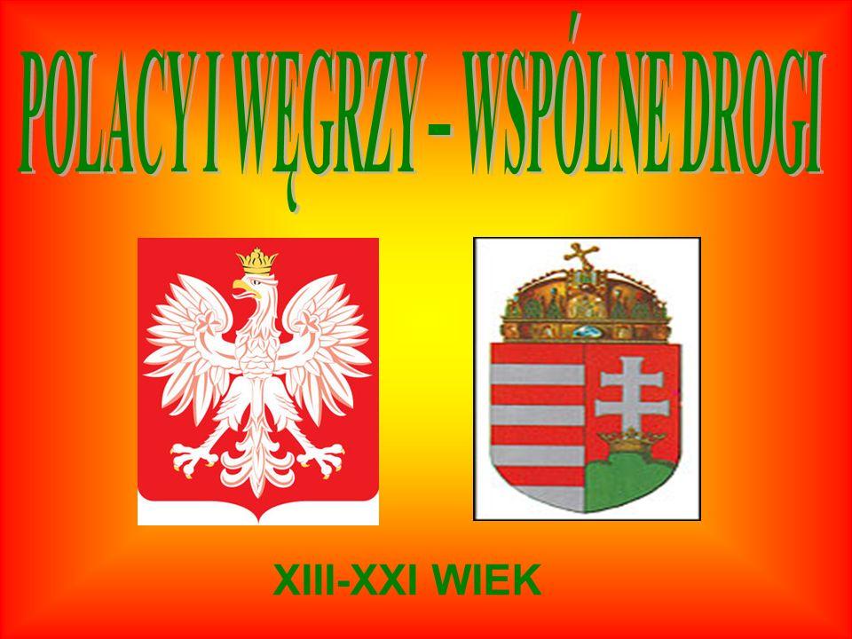Celem naszego projektu zatytułowanego: Polacy i Węgrzy-wspólne drogi XIII-XXI wiek jest ukazanie wspólnych losów i współpracy obu narodów na przestrzeni wieków.