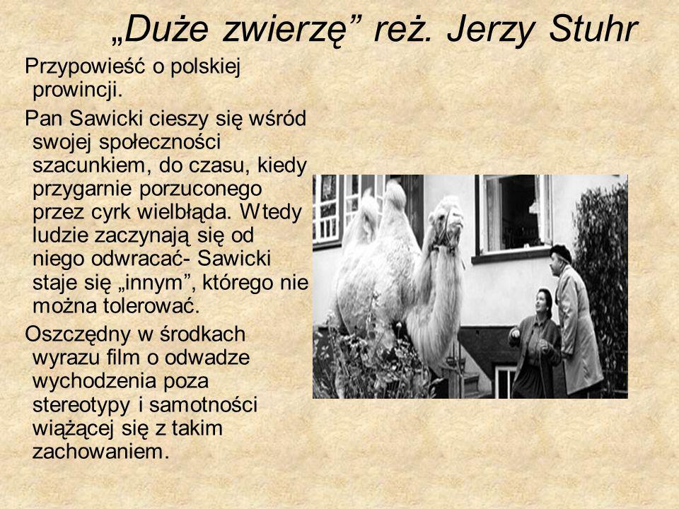 Duże zwierzę reż. Jerzy Stuhr Przypowieść o polskiej prowincji. Pan Sawicki cieszy się wśród swojej społeczności szacunkiem, do czasu, kiedy przygarni