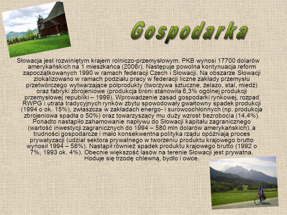 Słowacja jest rozwiniętym krajem rolniczo-przemysłowym. PKB wynosi 17700 dolarów amerykańskich na 1 mieszkańca (2006r). Następuje powolna kontynuacja