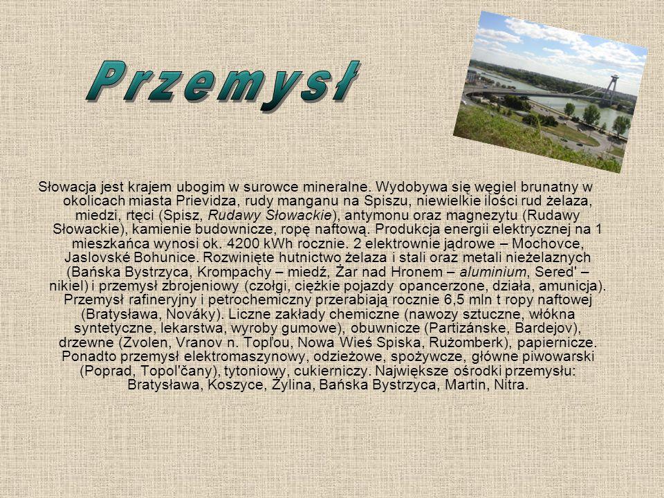 Słowacja jest krajem ubogim w surowce mineralne. Wydobywa się węgiel brunatny w okolicach miasta Prievidza, rudy manganu na Spiszu, niewielkie ilości