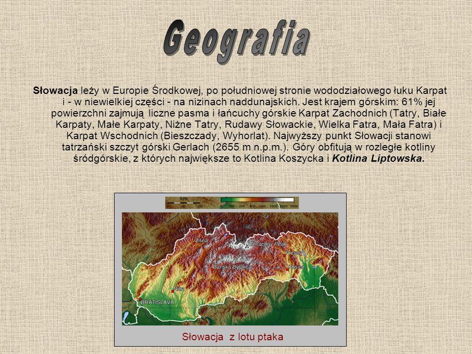 Słowacja leży w Europie Środkowej, po południowej stronie wododziałowego łuku Karpat i - w niewielkiej części - na nizinach naddunajskich. Jest krajem