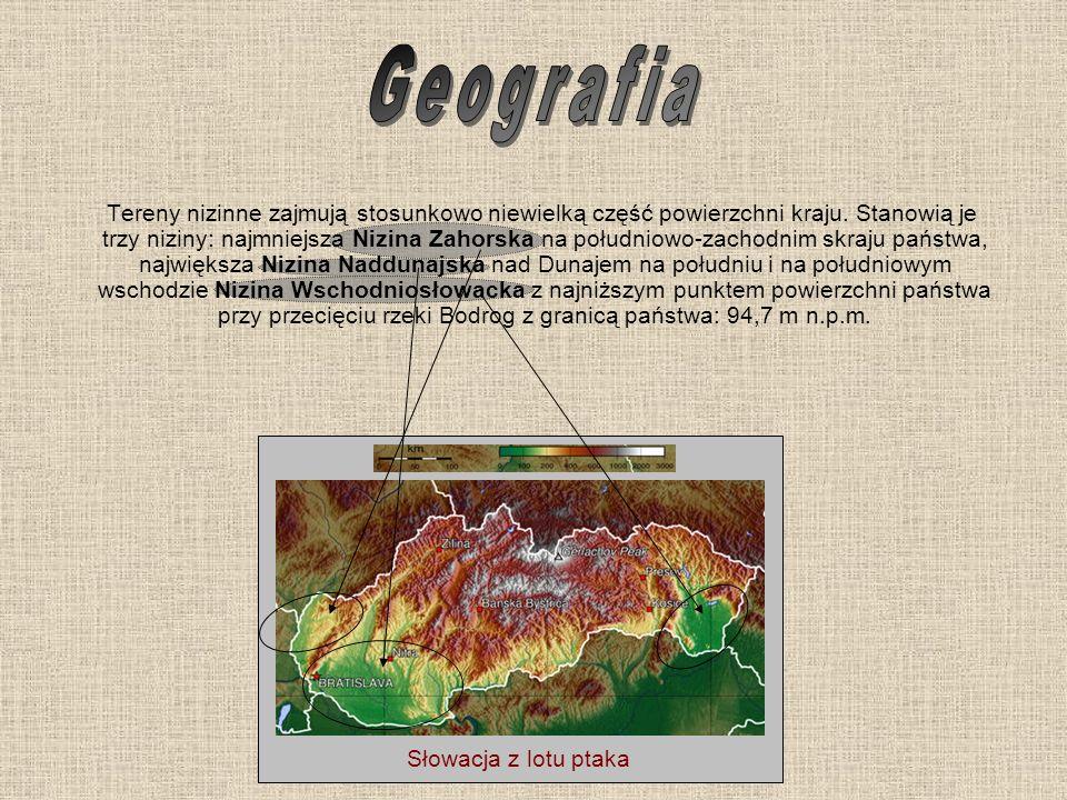 Tereny nizinne zajmują stosunkowo niewielką część powierzchni kraju. Stanowią je trzy niziny: najmniejsza Nizina Zahorska na południowo-zachodnim skra