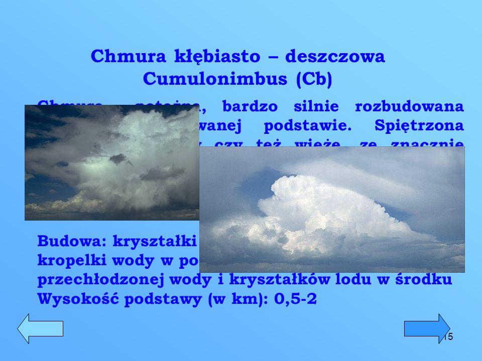 16 Chmura kłębiasta Cumulus (Cu) Chmura w postaci kłębu o wyrazistej, ciemniejszej podstawie i kalafiorowatym szczycie.