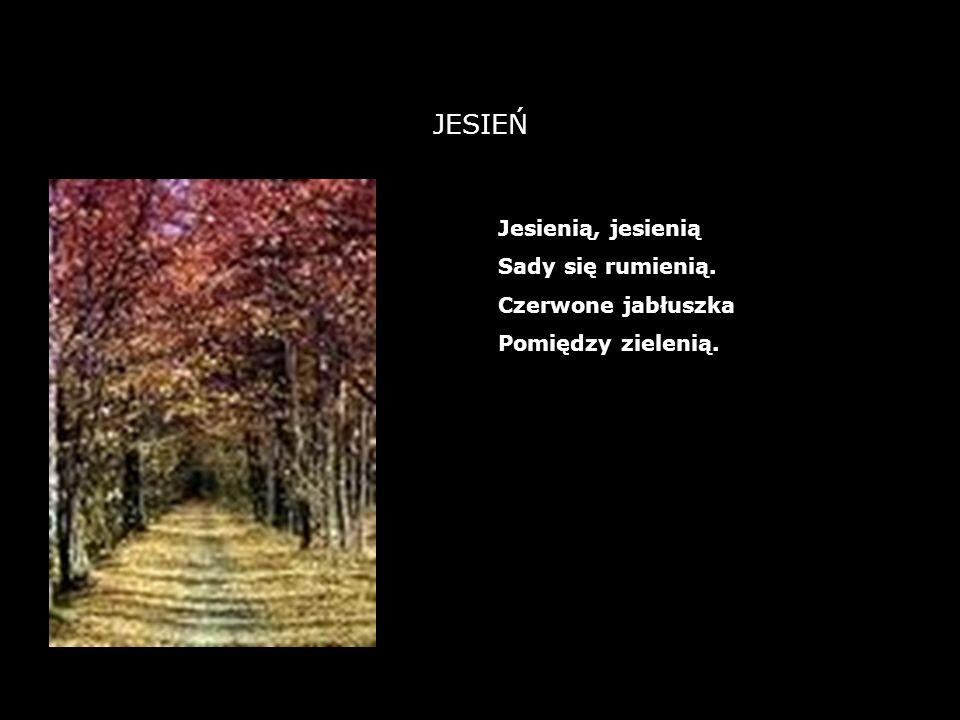 12 JESIEŃ Jesienią, jesienią Sady się rumienią. Czerwone jabłuszka Pomiędzy zielenią.