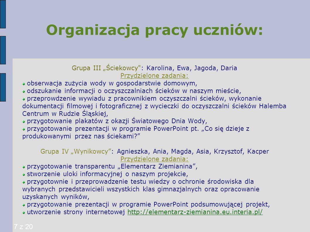 Rola nauczyciela: Organizacja spotkań konsultacyjnych, sporządzanie z nich sprawozdań, organizowanie niezbędnego sprzętu, np.