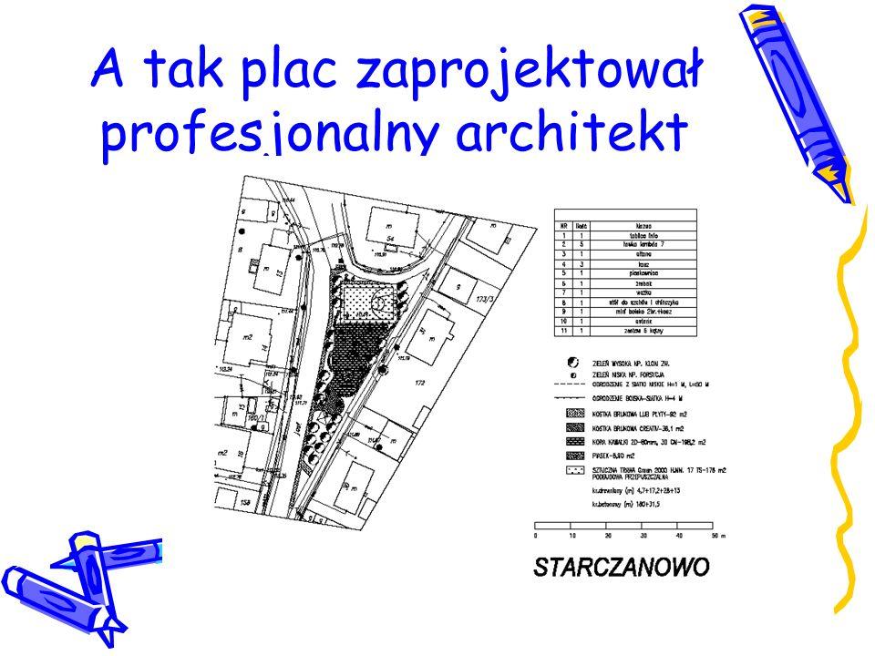 A tak plac zaprojektował profesjonalny architekt