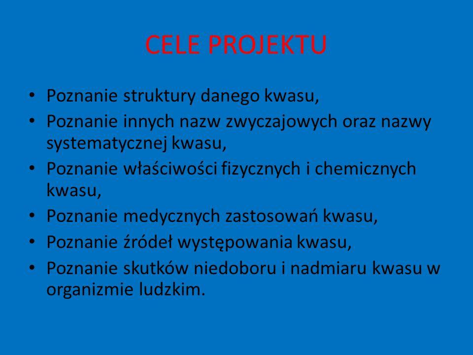 OPIS PROJEKTU Projekt rozpoczął się 24.03.2008 i trwał do 16.05.2008.