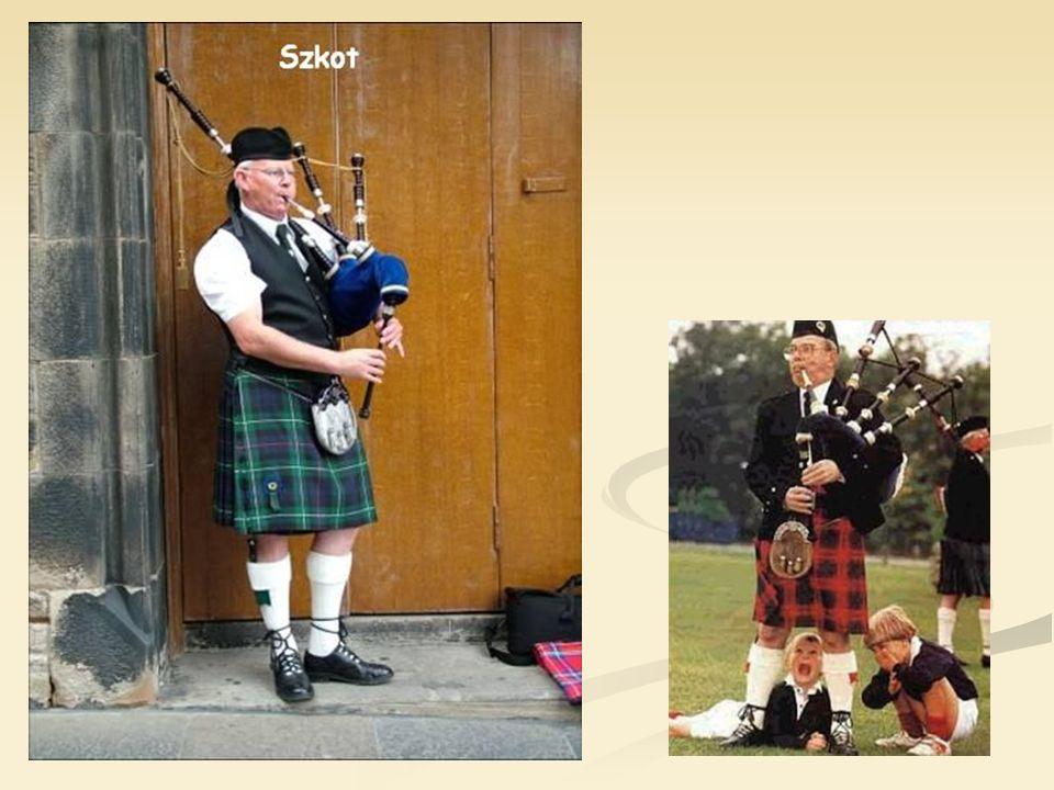 Regionem najbardziej autonomicznym jest Szkocja. Kultura zapisana jest w historii zamków, to także dudziarze w kiltach. Posiada ona własny parlament o