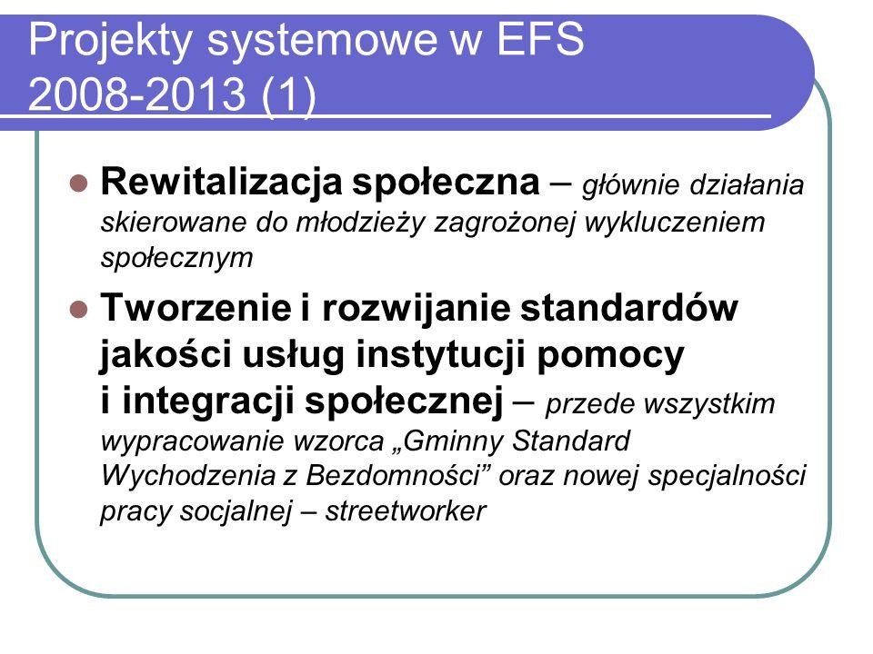 Projekty systemowe w EFS 2008-2013 (1) Rewitalizacja społeczna – głównie działania skierowane do młodzieży zagrożonej wykluczeniem społecznym Tworzenie i rozwijanie standardów jakości usług instytucji pomocy i integracji społecznej – przede wszystkim wypracowanie wzorca Gminny Standard Wychodzenia z Bezdomności oraz nowej specjalności pracy socjalnej – streetworker