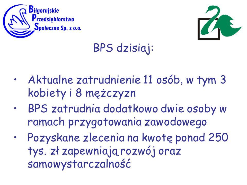 BPS dzisiaj: Aktualne zatrudnienie 11 osób, w tym 3 kobiety i 8 mężczyzn BPS zatrudnia dodatkowo dwie osoby w ramach przygotowania zawodowego Pozyskan