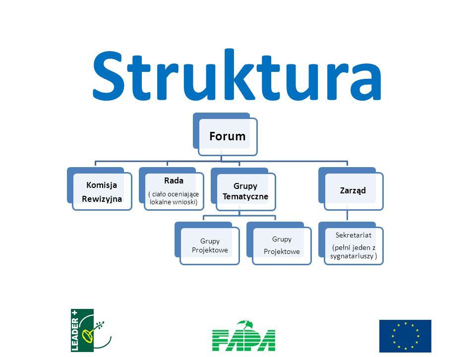 Forum Komisja Rewizyjna Rada ( ciało oceniające lokalne wnioski) Grupy Tematyczne Grupy Projektowe Grupy Projektowe Zarząd Sekretariat (pełni jeden z sygnatariuszy ) Struktura