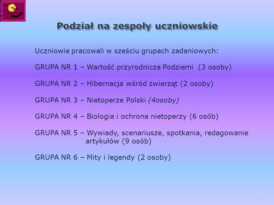 Uczniowie pracowali w sześciu grupach zadaniowych: GRUPA NR 1 – Wartość przyrodnicza Podziemi (3 osoby) GRUPA NR 2 – Hibernacja wśród zwierząt (2 osob