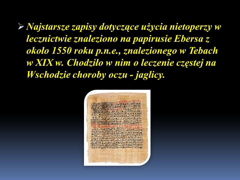 Najstarsze zapisy dotyczące użycia nietoperzy w lecznictwie znaleziono na papirusie Ebersa z około 1550 roku p.n.e., znalezionego w Tebach w XIX w. Ch