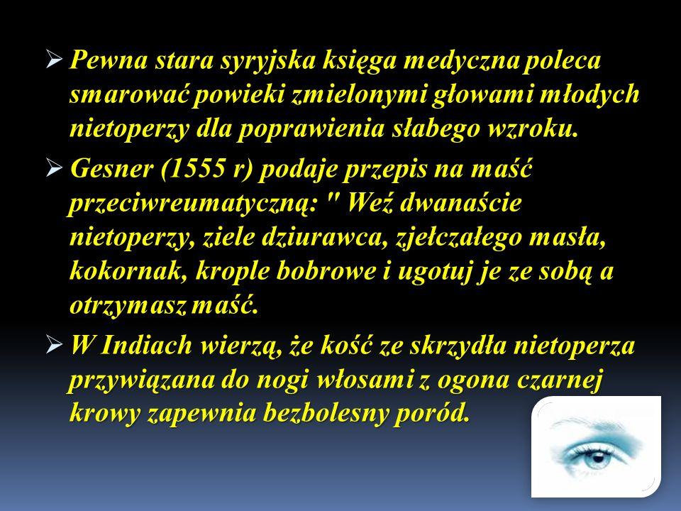 Pewna stara syryjska księga medyczna poleca smarować powieki zmielonymi głowami młodych nietoperzy dla poprawienia słabego wzroku. Pewna stara syryjsk