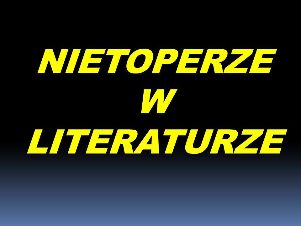 NIETOPERZE W LITERATURZE