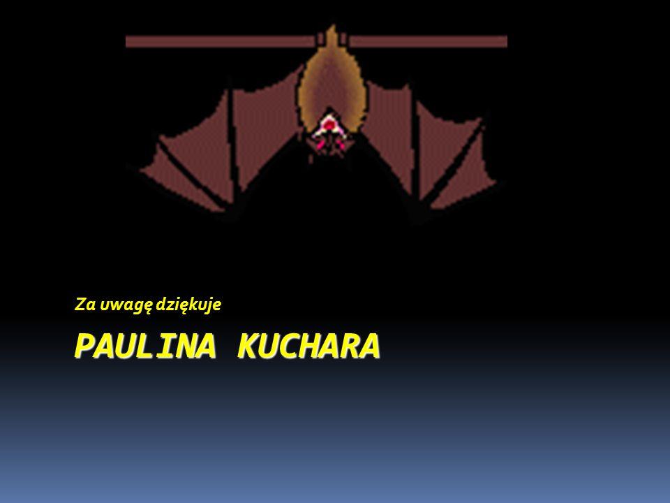 PAULINA KUCHARA Za uwagę dziękuje