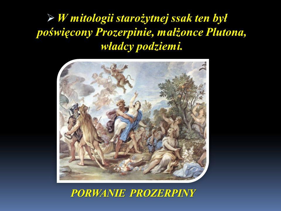 PORWANIE PROZERPINY W mitologii starożytnej ssak ten był poświęcony Prozerpinie, małżonce Plutona, władcy podziemi. W mitologii starożytnej ssak ten b