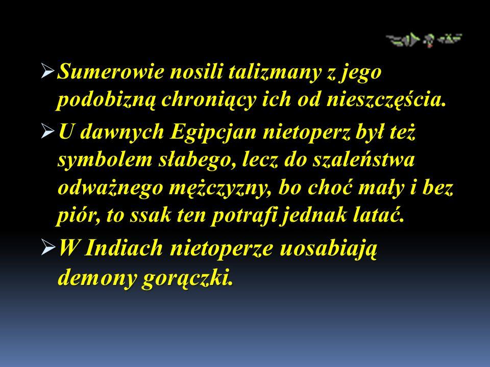 Sumerowie nosili talizmany z jego podobizną chroniący ich od nieszczęścia.