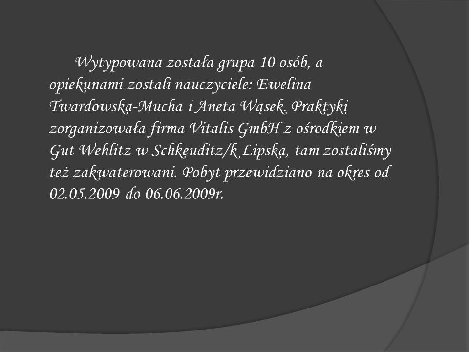 Wytypowana została grupa 10 osób, a opiekunami zostali nauczyciele: Ewelina Twardowska-Mucha i Aneta Wąsek. Praktyki zorganizowała firma Vitalis GmbH