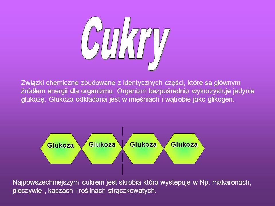 Związki chemiczne zbudowane z identycznych części, które są głównym źródłem energii dla organizmu. Organizm bezpośrednio wykorzystuje jedynie glukozę.
