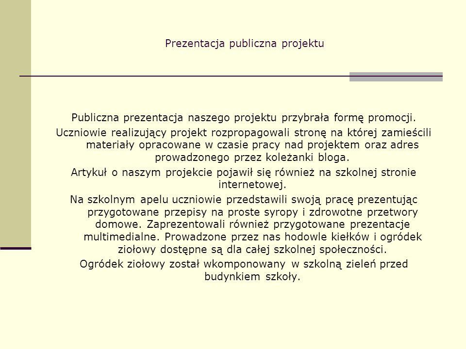 Prezentacja publiczna projektu Publiczna prezentacja naszego projektu przybrała formę promocji. Uczniowie realizujący projekt rozpropagowali stronę na