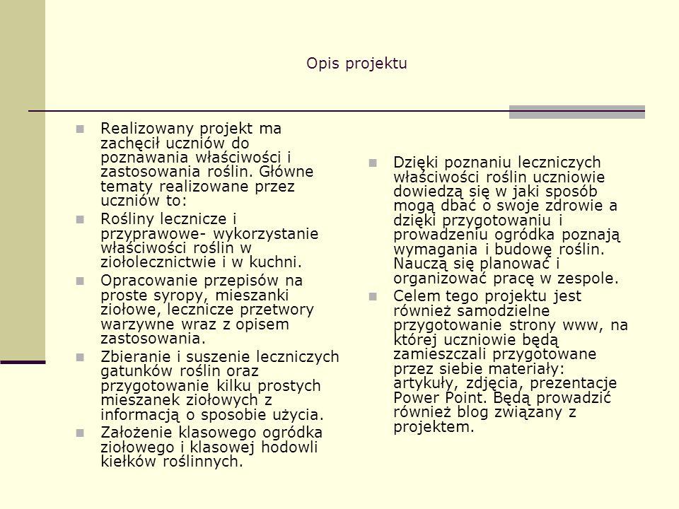 Rezultaty pracy uczniów – strona internetowa Uczniowie opracowali i zamieścili stronę WWW naszego projektu.