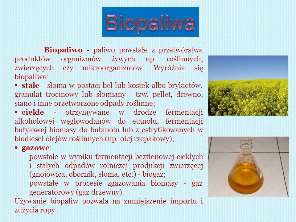 Biopaliwo - paliwo powstałe z przetwórstwa produktów organizmów żywych np. roślinnych, zwierzęcych czy mikroorganizmów. Wyróżnia się biopaliwa: stałe