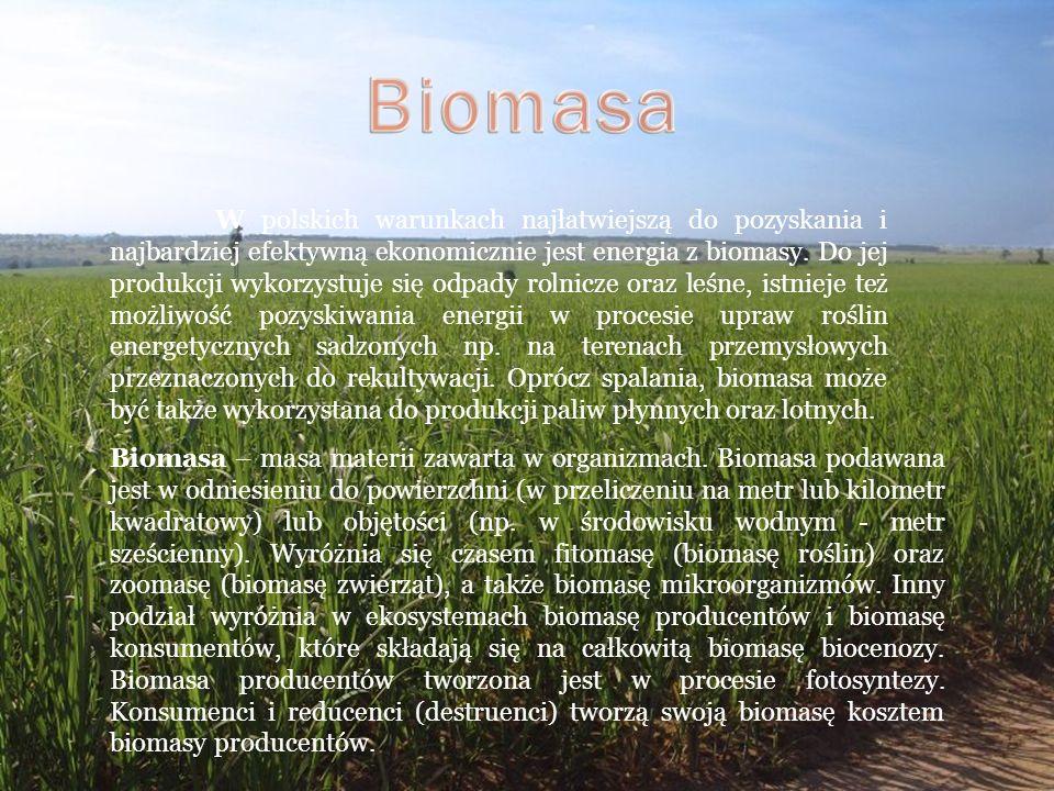W polskich warunkach najłatwiejszą do pozyskania i najbardziej efektywną ekonomicznie jest energia z biomasy. Do jej produkcji wykorzystuje się odpady
