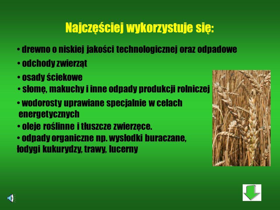Biomasę określa się jako masę materii organicznej, zawartą w organizmach zwierzęcych lub roślinnych. Energię zawartą w biomasie można wykorzystać dla