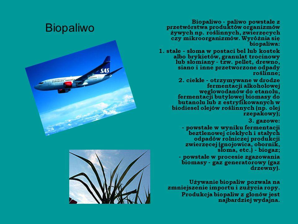 Biopaliwo Biopaliwo - paliwo powstałe z przetwórstwa produktów organizmów żywych np. roślinnych, zwierzęcych czy mikroorganizmów. Wyróżnia się biopali