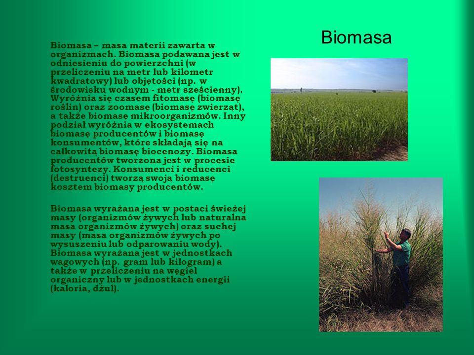 Biomasa Biomasa – masa materii zawarta w organizmach. Biomasa podawana jest w odniesieniu do powierzchni (w przeliczeniu na metr lub kilometr kwadrato