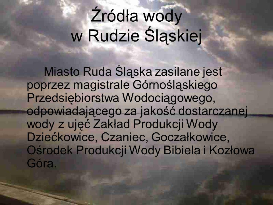 Źródła wody w Rudzie Śląskiej Miasto Ruda Śląska zasilane jest poprzez magistrale Górnośląskiego Przedsiębiorstwa Wodociągowego, odpowiadającego za ja