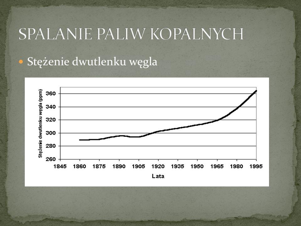 ALTERNATYWNE ŹRÓDŁA ENERGII W EUROPIE Do 2010 roku Polska powinna wytwarzać 7,5 proc.